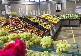 رکورد شکنی قیمت انواع میوه و سبزی / رشد چند برابری قیمت گوجه فرنگی به رغم مازاد تولید در کشور