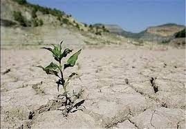 بدون تعارف هشدار می دهیم آب نیست/ مردم و مسئولان بههوش باشند